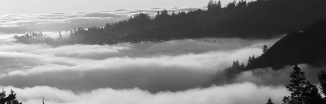 fog-around-cmr-website-home-page-bw